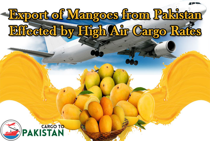 Export of Mangoes from Pakistan Effected by High Air Cargo